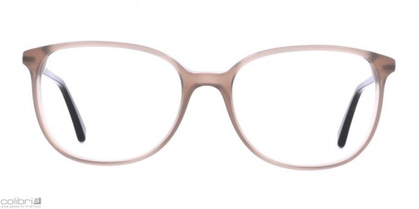 Hedwig 40 - taupe transparent